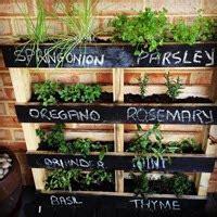 herb gardening  unique ways jims mowing nz