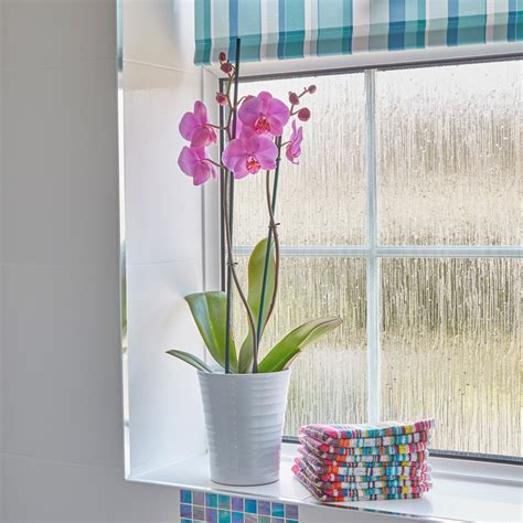 obscured glass   bathroom window    options