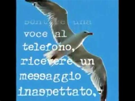 Il Gabbiano Jonathan Livingston Di Richard Bach by Il Gabbiano Jonathan Livingston Di Richard Bach Pdf