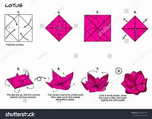 Ilustraci U00f3n De Stock Sobre Origami Flower Lotus Diagram