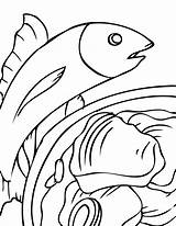 Seafood Coloring Tuna Results Ink sketch template