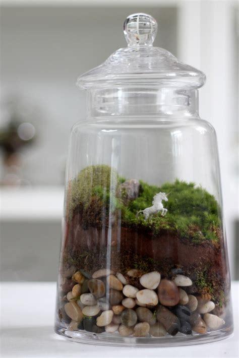 terrarium twig twigterrariums s most interesting flickr photos picssr