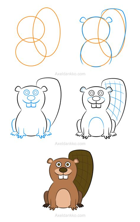 beaver drawing ideas  pinterest baby beaver