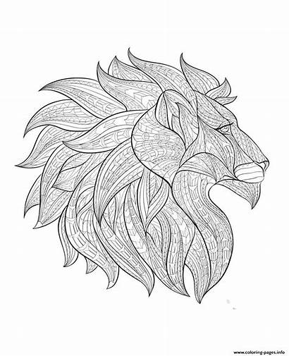 Coloring Lion Profile Head Adult Pages Africa