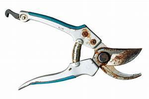 Rost Entfernen Werkzeug : gartenschere rostet so entfernen sie den rost mit hausmitteln ~ Watch28wear.com Haus und Dekorationen