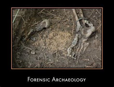 images  forensic science  pinterest