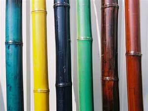Gros Bambou Deco : tige de bambou colore sur commande occultation pinterest photos et bambou ~ Teatrodelosmanantiales.com Idées de Décoration