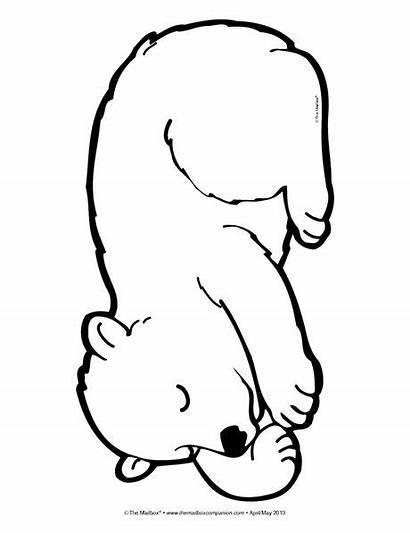 Bear Sleeping Coloring Sketch Drawing Mailbox Preschool