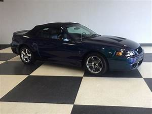 2004 Ford Mustang SVT Cobra Mystichrome for Sale | ClassicCars.com | CC-1031792