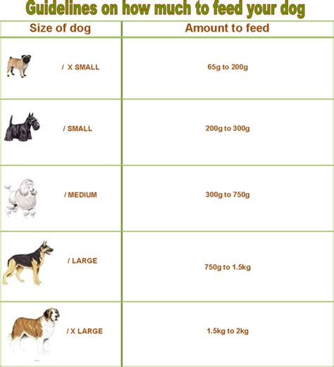 feeding guidelines petmate food durban organic home