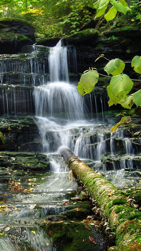Hd wallpapers and background images. Nature Wallpaper For Android - 2020 Android Wallpapers