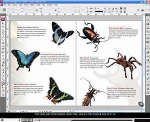 12 Best Photos Of Program Book Layout