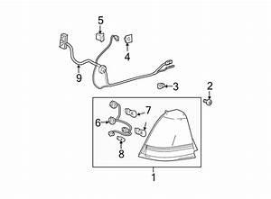 Chevrolet Malibu Tail Light Socket  Wagon  Lamps