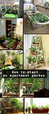 25+ best ideas about Small Space Gardening on Pinterest indoor gardens apartment design
