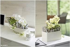 Schalen Deko Ideen : dekoideen mit orchideen f r schalen tiziano design ~ Whattoseeinmadrid.com Haus und Dekorationen