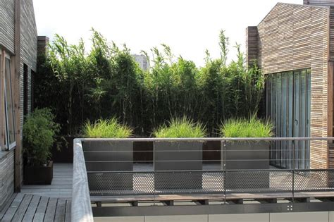 mur de bambou exterieur cacher le vis a vis une haie de bambous jardin haie de bambou haies et vis