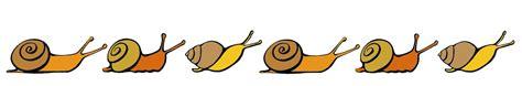 escargot de bourgogne à soissons