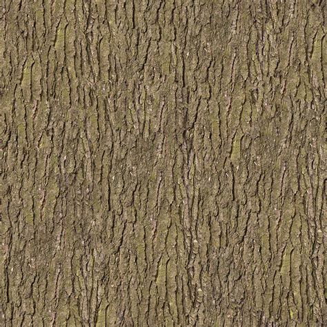 trees texture paramecij s tree trunks and stumps texture pack 1 vegetation tree bark 41 png opengameart org