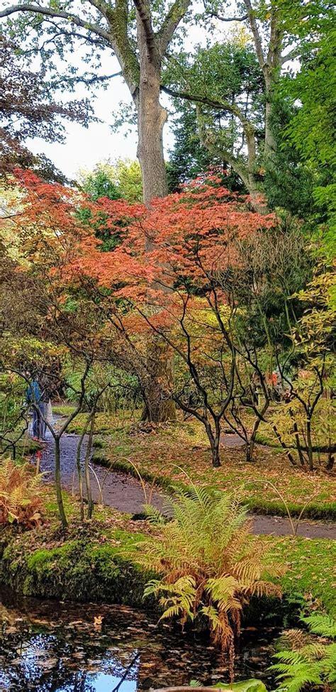 Japanischer Garten Niederlande by Japanese Garden Den Haag Aktuelle 2019 Lohnt Es Sich