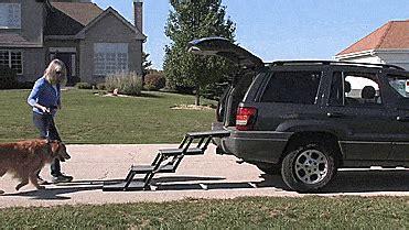 pet loader folding stairs    dog   car