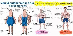 7 Body Hacks To Naturally Increase Testosterone Levels