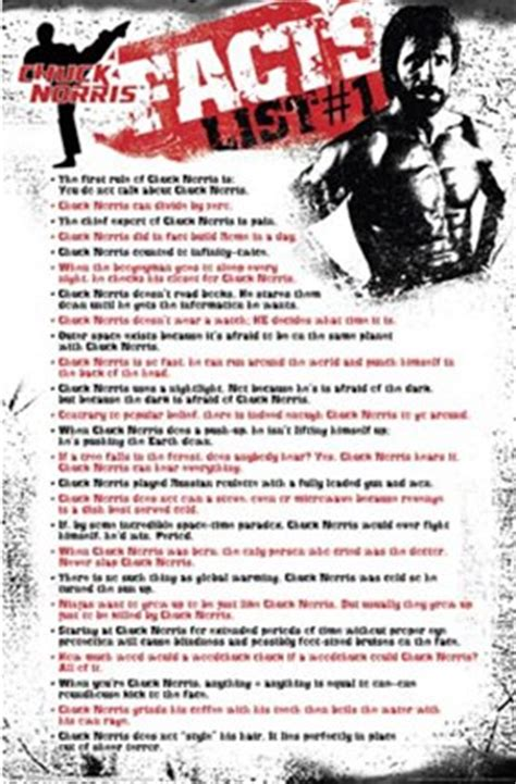 chuck norris facts list wall poster  unknown