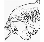 Unicorns 8 Fantasy Coloring Pages & Book