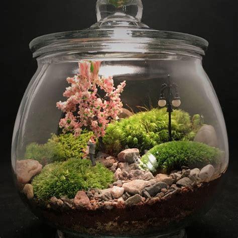 สวนในขวดแก้วแบบนี้ แพงไหมครับ - Pantip