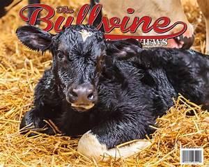 Bullvine Cover 2016