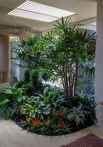 Indoor, Plant, Care, For, All, Of, Your, Plant, Needs