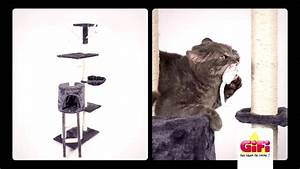 Arbre A Chaton : arbre a chat gifi spot tv f v2015 youtube ~ Premium-room.com Idées de Décoration