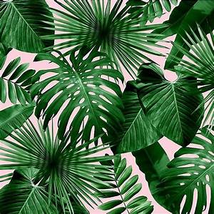 155 best Wallpaper images on Pinterest Wall papers