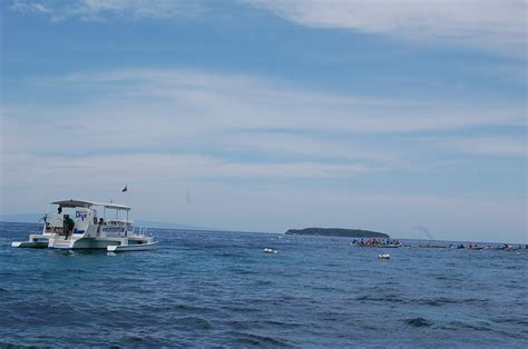 Dolphin Boat Rentals by Bohol Boat Rental For Dolphin Island Hopping