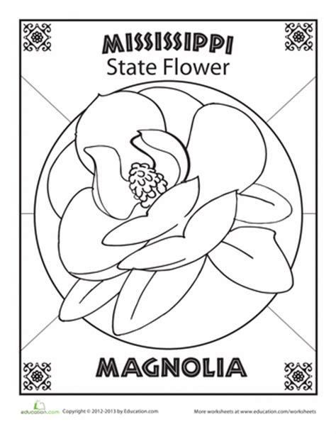 Mississippi State Flower  Mississippi State And Worksheets