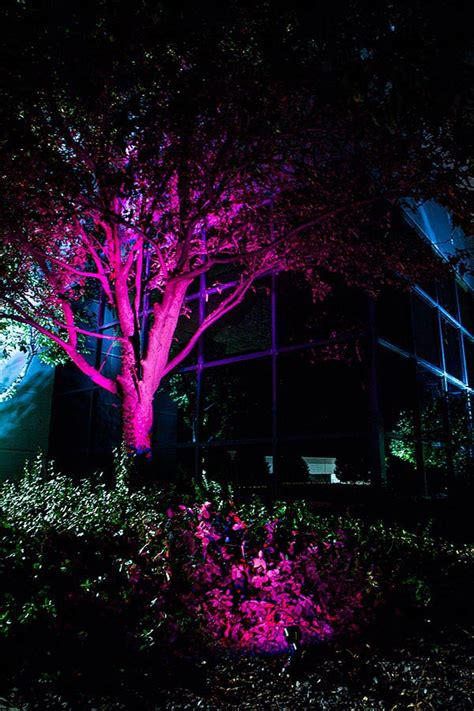 6w color changing rgb led landscape spotlight remote sold