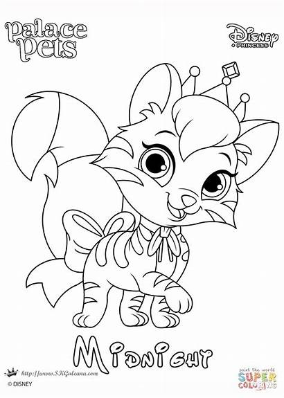 Coloring Pets Palace Princess Midnight Disney Pages