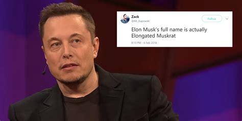 internet  calling elon musk elongated muskrat
