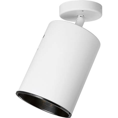 currey and company progress lighting p6397 30 directional spotlight fixture