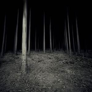 Dark, Scary, Forest