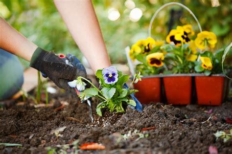planting a garden spring gardening tips inspiration
