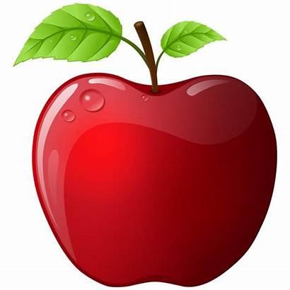 Apple Leaves Fangol Rgbimg Users Fa