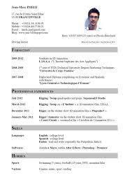 curriculum vitae english    cv template