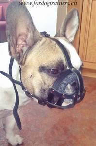 Hundebekleidung Französische Bulldogge : maulkorb f r franz sische bulldogge bestes design ~ Frokenaadalensverden.com Haus und Dekorationen
