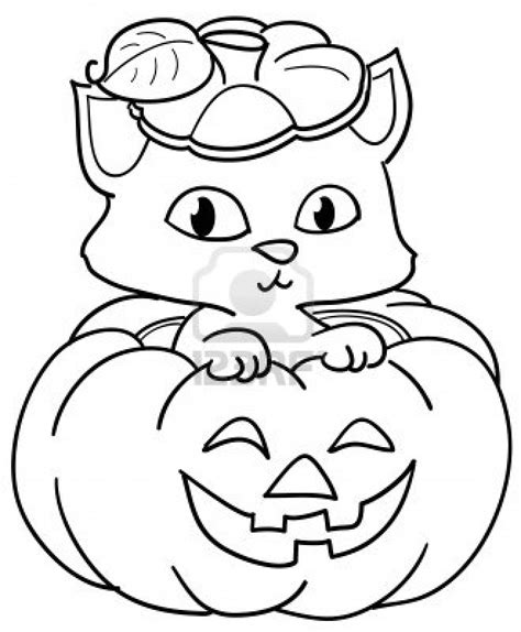 Cat Color Pages Printable Cat Kitten Printable Pages 10044