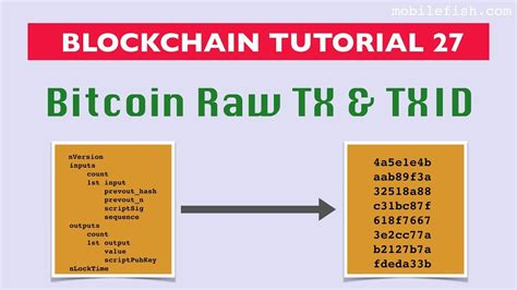 The bitcoin transaction example that we introduced in section 2 has p2pkh scriptpubkeys we will look at an example of a bitcoin transaction that implements such a locking script when we extracts the 32 byte long txid, converts it to big endian and appends the result to the prev_tx_id array. #Blockchain tutorial 27: #Bitcoin raw transaction and transaction id https://www.youtube.com ...