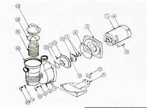 Pentair Pinnacle Pump Parts Diagram