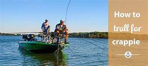 Learn How To Troll For Crappie With These Amazing Tips