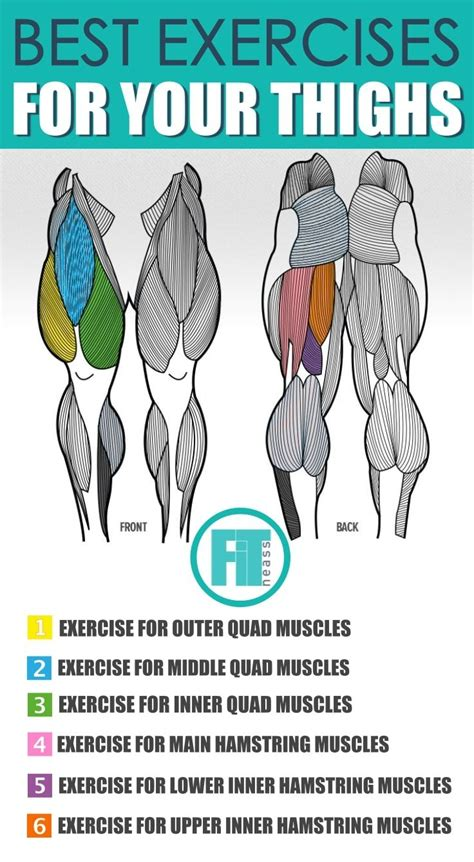 Knowing muscle names and their functions will help you to choose the right exercises, practice proper form, and better connect with and target your muscles. Upper Leg Muscles Workout - Full Body Workout Blog