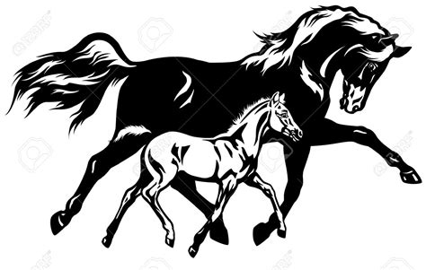 clipart mare mare and foal clip free clipground