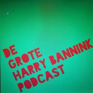 'De Grote Harry Bannink Podcast' van Gijs Groenteman op ...